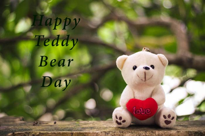 teddy day pic