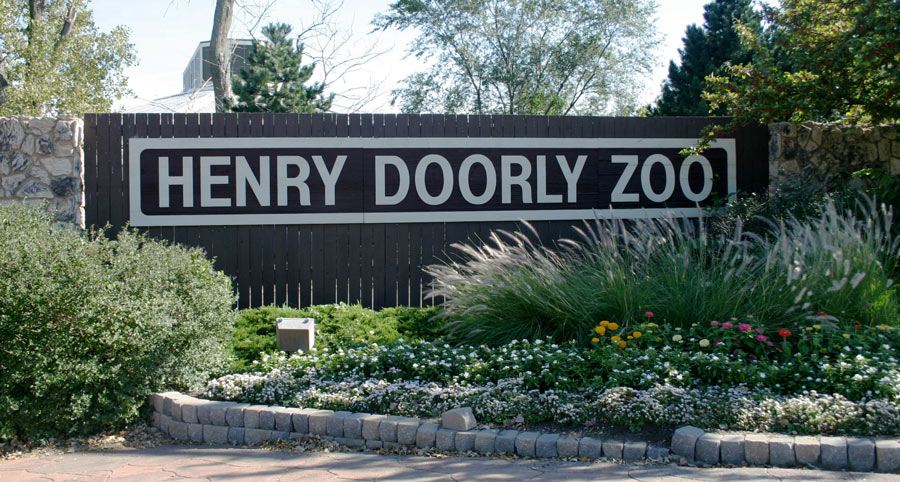 Top 10 Best Zoos in the US Might Surprise You!