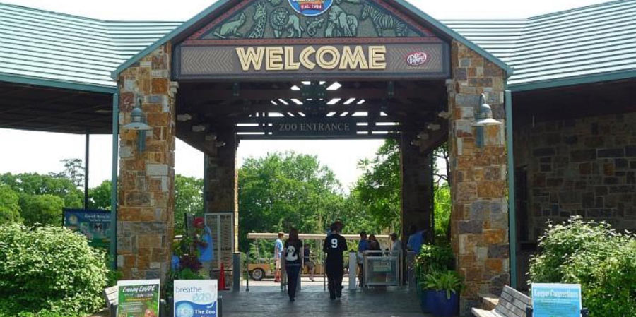 Top 10 best zoos in the us might surprise you Garden city zoo