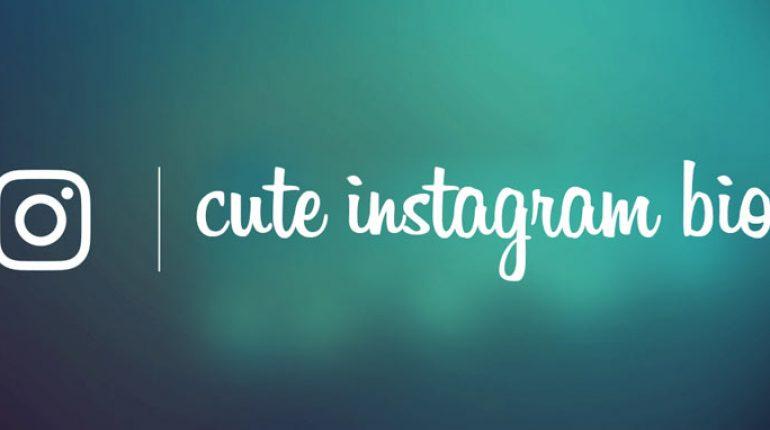 Cute Instagram Bios