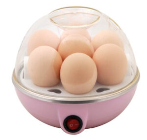 Curiocity Electric Egg Cooker